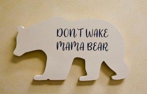 1 - Dont wake mama bear